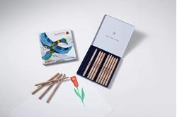 Picture of 12 coloured triangular pencils + 1, Stockmar