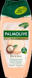 """תמונה של להחיות, 250 מ""""ל סבון Palmolive"""